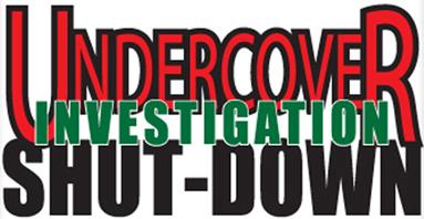 Lagunitas Undercover Investigation Shut-Down Ale cover